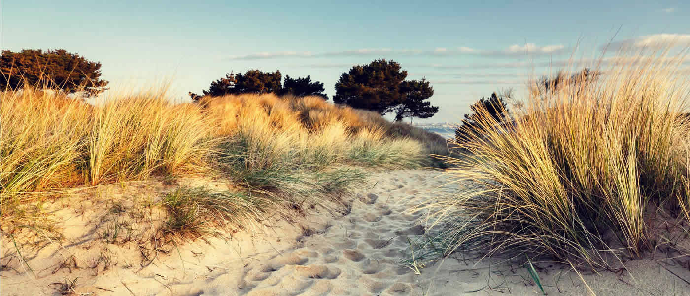 sandbanks-dunes-rumsey-of-sandbanks